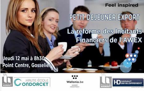 Colloques sur la réforme des incitants financiers de l'AWEX - 12 mai à Mons | Agenda HAINAUT DEVELOPPEMENT | Scoop.it