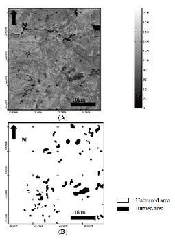 Increasing Spatial Detail of Burned Scar Maps Using IRS‑AWiFS Data for MediterraneanEurope | Remote Sensing News | Scoop.it