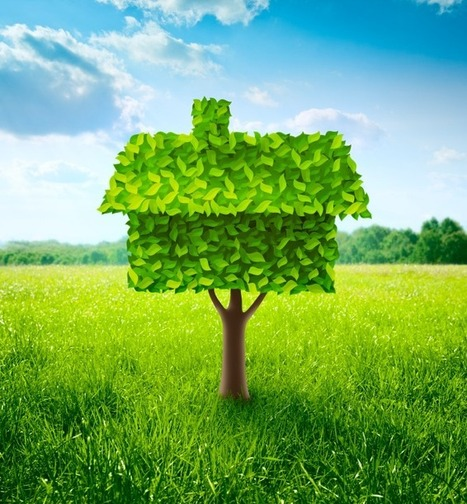 How to plan an eco-friendly home remodel » Adorable Home | Home Improvement Digest | Scoop.it