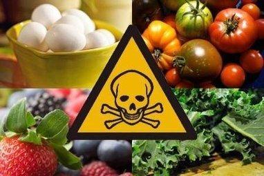 Quand la dose ne fait plus le poison : la toxicologie alimentaire revisitée | Toxique, soyons vigilant ! | Scoop.it