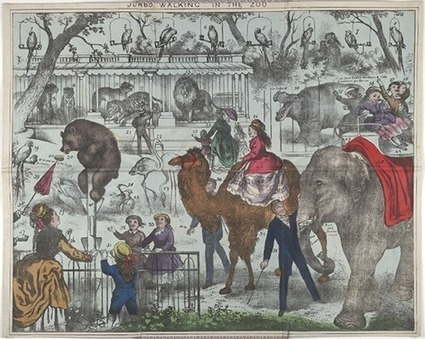 Bodleian Libraries invite scholars, teachers and the public to explore its digital collections on new online portal, Digital.Bodleian   Library Collaboration   Scoop.it