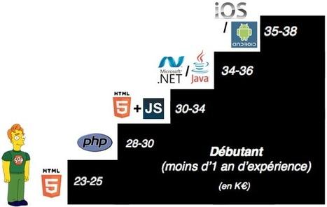 Quel salaire pour un bon développeur ? | La vie en agence web | Scoop.it