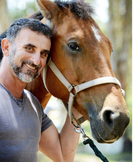 Horses thrive on pressure points - Northern Star | Horse Kinetics | Scoop.it