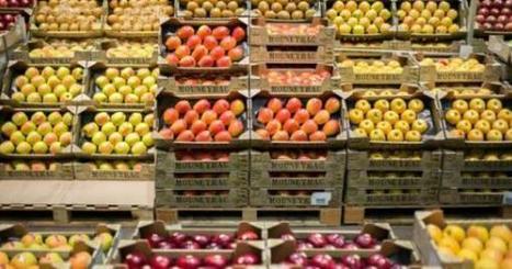 94% des Français veulent consommer « responsable et durable » | Cette nature qui nous soigne | Scoop.it