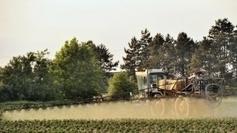 Les maladies des agriculteurs, entre reconnaissances et lourds ... - France 3 | pesticides : un vrai cancer social ? | Scoop.it