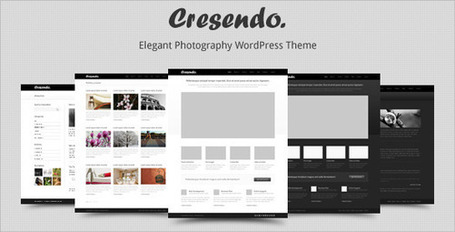 Cresendo - Elegant Photography WordPress Theme | Premium Wordpress Themes | Scoop.it