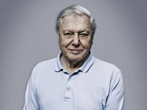 Sir David Attenborough: 'This awful summer? We've only ourselves to blame...' | I love my world - natural outdoor play | Scoop.it