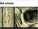 Les estampes de la BNF s'exposent sur le Net - LeJournaldesArts.fr - 05 mars 2012 | BiblioLivre | Scoop.it