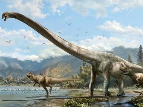 Dragon-Like 50-Foot-Long Dinosaur Fossil Discovery in China Stumps Palaeontologists | Geology | Scoop.it