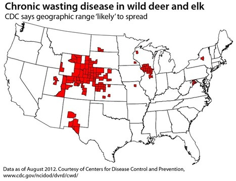 Prions — in plants? New concern for chronic wasting disease | WisconsinWatch.org | Sustain Our Earth | Scoop.it