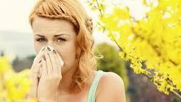 Natural Treatments For Seasonal Allergy Relief < Allergies | Healthy Lifestyle | Scoop.it