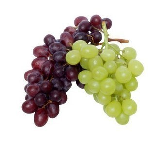 Transcriptome Sequencing of the Wine Grape (Vitis vinifera L ... | Plant Genomics | Scoop.it