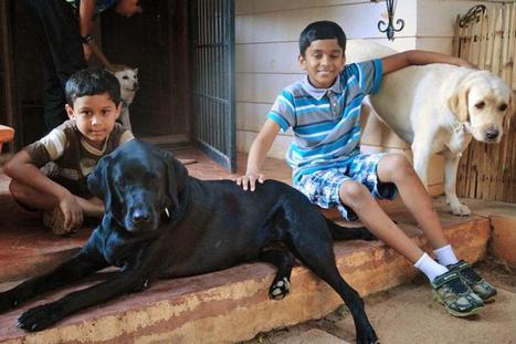 Life skills that pet ownership can teach children | Education Zone | Scoop.it
