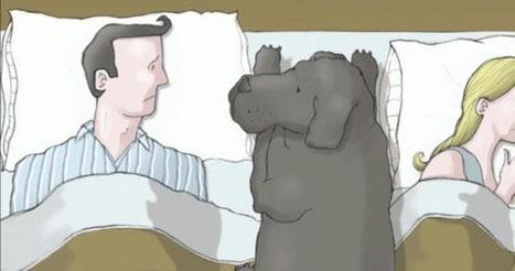 Masennus selitettynä neljässä minuutissa | Elias terveys | Scoop.it