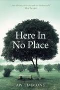 It's All About Thinking: Here In No Place by A. W. Timmons | The Irish Literary Times | Scoop.it