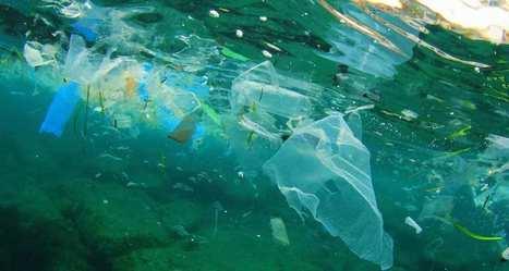 Comment faire pour qu'en 2050, il n'y ait pas plus de plastiques que de poissons dans l'océan? | Inventive, innovation & creativity sourcing | Scoop.it