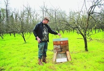 Yvetot (76) : ce dimanche, découvrez les abeilles...!!! F9kPjR-vLtuSfnxVlTLnXTl72eJkfbmt4t8yenImKBVaiQDB_Rd1H6kmuBWtceBJ