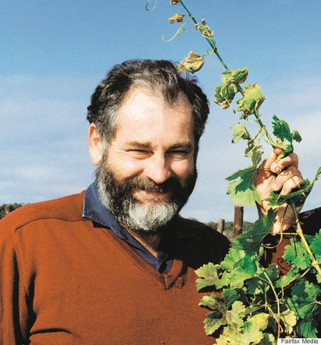 Les nouvelles méthodes des vignerons confrontés au changement climatique | Latests news in Wine Fermentation | Scoop.it