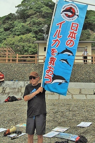 Blog: Video of Japan Dolphins Day in Taiji | Ric O'Barry's Dolphin Project | Ric O'Barry's Dolphin Project | Scoop.it