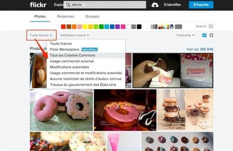Créer des visuels pour le web   Le numérique vue par un Doughnut   Scoop.it
