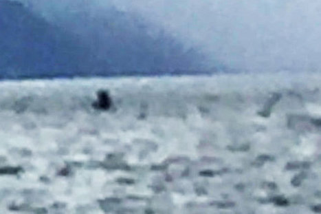 Does this explosive photograph FINALLY prove the Loch Ness monster exists? | Cryptic Content: Cryptozoology | Scoop.it