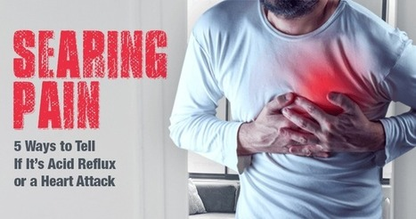 Searing Pain: 5 Ways to Tell If It's Acid Reflux or a Heart Attack | Heartburn Relief | Scoop.it