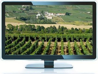 Nos députés veulent créer des TV sur le vin | Le vin quotidien | Scoop.it