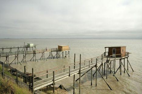 Le Poitou-Charentes lance son initiative en faveur des énergies marines renouvelables | community farm | Scoop.it