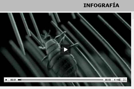 Los vídeos en salud pueden educar pero también desinformar | ComunicaFarma | Scoop.it