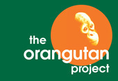 The Orangutan Project | Asia Pacific Region - Geography | Scoop.it