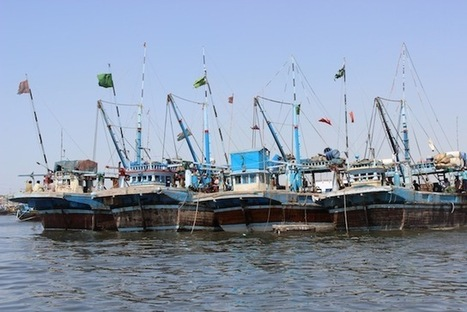 Inside Pakistan's Untapped Fishing Industry | Inter Press Service | Sustain Our Earth | Scoop.it