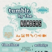 #Tumblr by the Numbers [Infographic] | Social Media e Innovación Tecnológica | Scoop.it