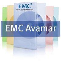 EMC : l'outil de déduplication Avamar passe en 6.0 | LdS Innovation | Scoop.it