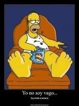 La teoría de la estupidez funcional... o mi faceta Homer Simpson... | Adrián Chiogna | Scoop.it
