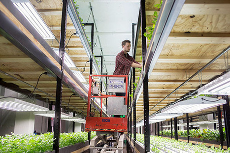 Water challenge spurs firms to act | Albert Lea Tribune | Vertical Farm - Food Factory | Scoop.it