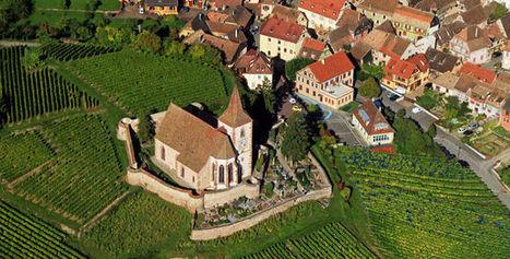 10 faits que vous ignoriez sur les Vins d'Alsace | Oenologie - Vins - Bières | Scoop.it