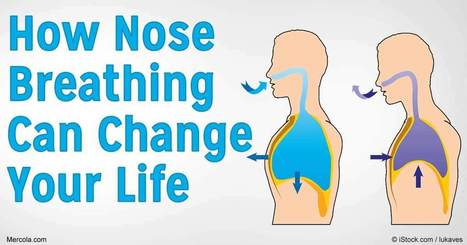 Why Is Nose Breathing Important for Optimal Health and Fitness? | FOOD? HEALTH? DISEASE? NATURAL CURES??? | Scoop.it