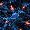 Objets intelligents, smart systems et Internet des objets