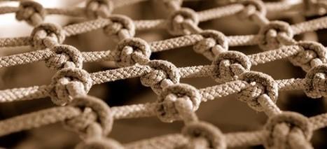 Plataforma foca no aprendizado em rede | PORVIR | TIC na Educação Científica e Tecnológica | Scoop.it