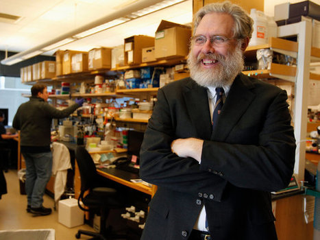 Scientists Talk Privately About Creating a Synthetic Human Genome   Systems Theory   Scoop.it