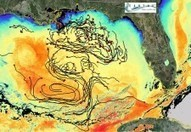 Ozgokmen Presents Drifter Research from Oil-Spill Study at U.S. Climate Summit | SecureOil | Scoop.it