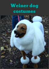 Weiner dog costumes | For home | Scoop.it