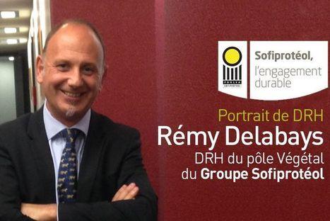 Portrait : Rémy Delabays, DRH du pôle Végétal du Groupe Sofiprotéol | Management des Ressources Humaines | Scoop.it