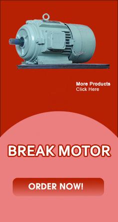 Electromagnetic Motors Equipments, Electric Motor Manufacturers India | bhtindia | Scoop.it