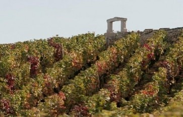 #Burgundy grand cru vineyard prices still rising | Vitabella Wine Daily Gossip | Scoop.it