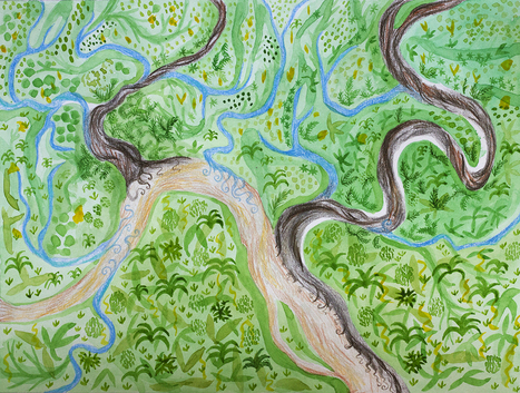 The 3 Types of Rivers in the Rainforest | Rainforest EXPLORER:  News & Notes | Scoop.it