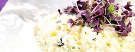 Mushroom and Black Garlic Risotto - Black Garlic UK | Black Garlic UK | Scoop.it