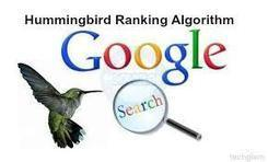 Google's new hummingbird algorithm. What is it? How does it work and how it will affect the website traffic?   SEO company in India   Scoop.it