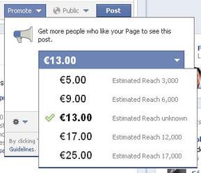 Promoted Posts de Facebook : le point de vue d'un spécialiste | Digital Experiences by David Labouré | Scoop.it