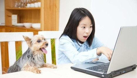 Sunday's Recap: 9 Blogs for Dog Lovers | Top Dog Tips | Dog Lovers | Scoop.it